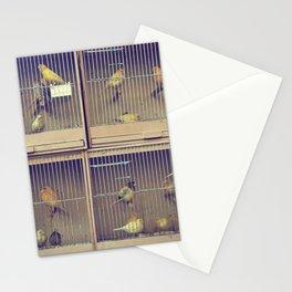 Les Oiseaux (Paris, France) Stationery Cards