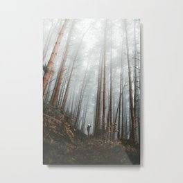 The Bewitching Woods Metal Print