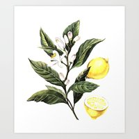 lemon Art Prints featuring Lemon by Anna Yudina