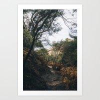 The path to the sea Art Print