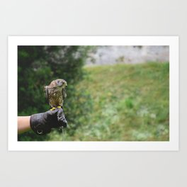 What about flying Art Print