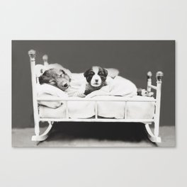 Harry Whittier Frees - Puppy With Insomnia Canvas Print