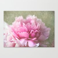 peony Canvas Prints featuring Peony by LoRo  Art & Pictures