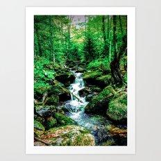 Falling Stream Art Print