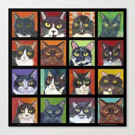 Black and tuxedo cats Canvas Print