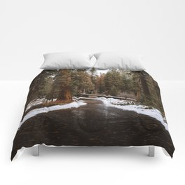 Tunnel Log Road in Sequoia Comforters