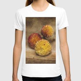 Still life #33 T-shirt