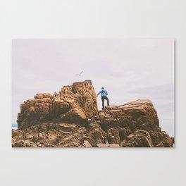 abel tasman coast, new zealand Canvas Print