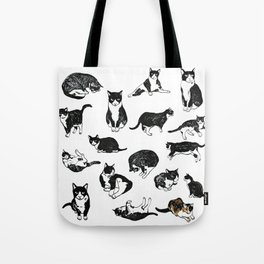 25 Cats Name Norrell and One Pigeon Tote Bag