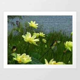 Lotus & Swallows Art Print