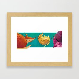 armadillos Framed Art Print