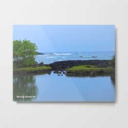 HIdden Treasures Metal Print