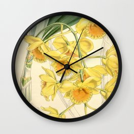 Dendrobium chrysotoxum Wall Clock