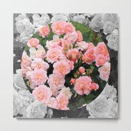 Rosa I Metal Print