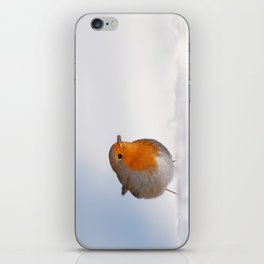 The Red White and Blue (Robin in the snow) iPhone Skin