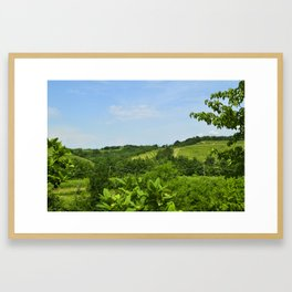 Landscpe Framed Art Print