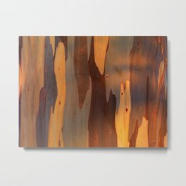 Eucalyptus Texture 3 Metal Print