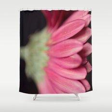 fuschia daisy petals Shower Curtain