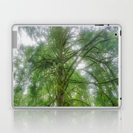 Ethereal Tree Laptop & iPad Skin
