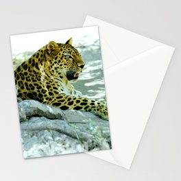 Leopard in Repose Stationery Cards