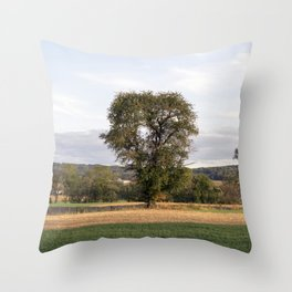 Strasburg Railroad Series 16 Throw Pillow