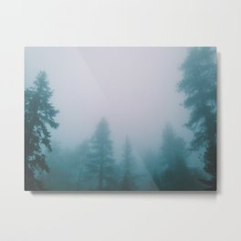 Sequoias in the Clouds  Metal Print