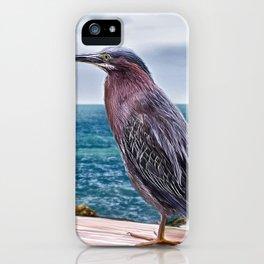 Key West Green Heron -  Photo painting iPhone Case