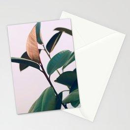 Ficus Elastica #4 Stationery Cards