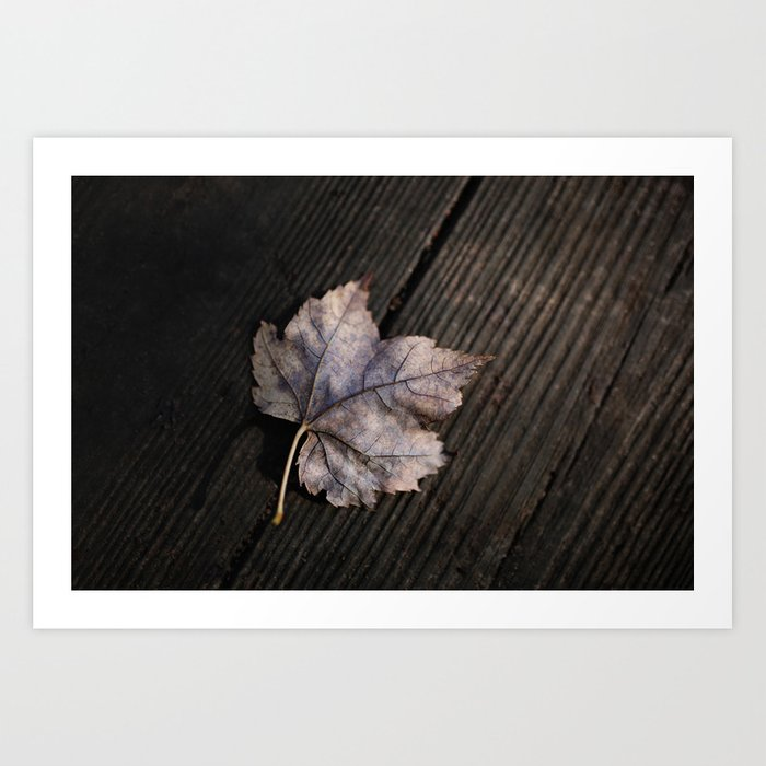 the lifelines of fall Art Print