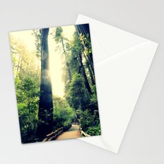 Muir Woods Path 2 Stationery Cards