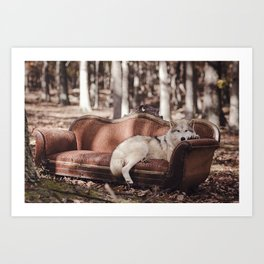Nap in the Woods Art Print