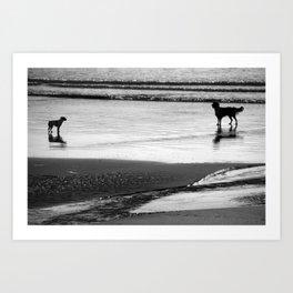 Standoff At The Beach Art Print