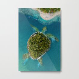 Turtle Island by the beach Metal Print