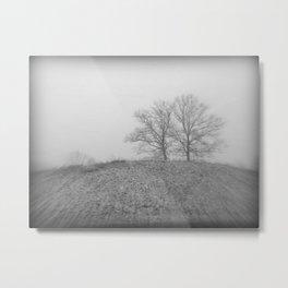 2 Trees * Drive~By series Metal Print