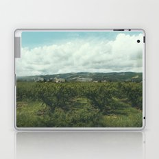 Vineyards, South of France Laptop & iPad Skin