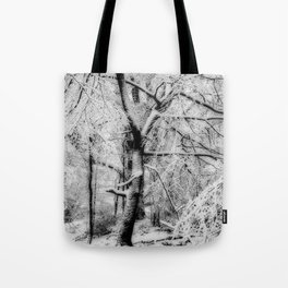 Snowbound Beech Tote Bag