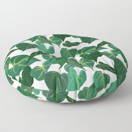 Philodendron Plant | White Floor Pillow