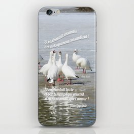 Les Oies Blanches : Si On Chantait - The White Geese : If We Sing iPhone Skin
