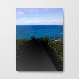 Blue and Sky Metal Print