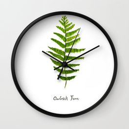 Ostrich fern Wall Clock