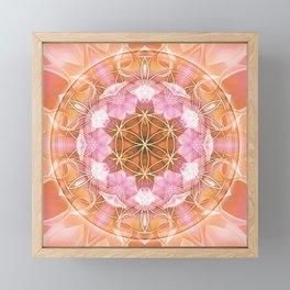Flower of Life Mandalas 18 Framed Mini Art Print
