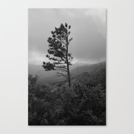 Survival (Black & White) Canvas Print