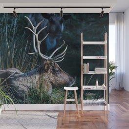 Bull Elk at Bear Country Wall Mural