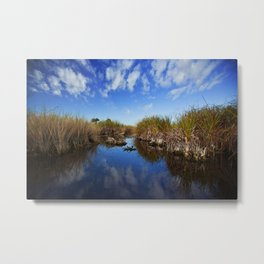 alligator in the distance Metal Print