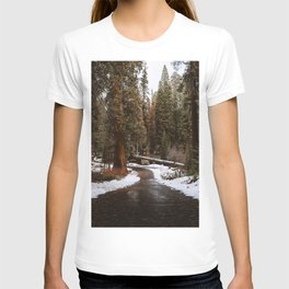Tunnel Log Road in Sequoia T-shirt