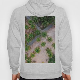 beach palm trees summer view from above aerial shot Hoody