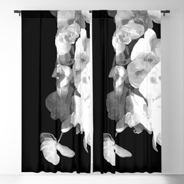 White Orchids Black Background Blackout Curtain