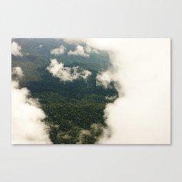 the rainforest  Canvas Print