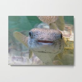 Smiling Fish Metal Print