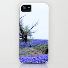 Lonely Tree & Bluebonnets iPhone Case
